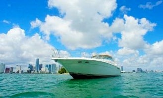 Book Your Time in Boston Today! Sea Ray Sundancer 500 Motor Yacht