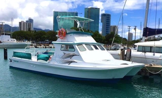 Private Dolphin Tour Charters In Honolulu, Hawaii