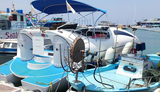 Enjoy Dolphin Tour In Ayia Napa, Cyprus