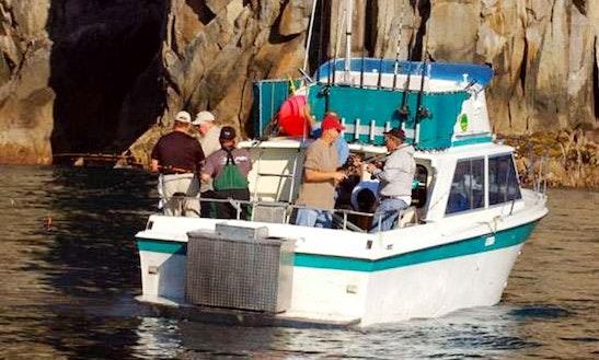 15' Jon Boat Charter In Soldotna, Alaska