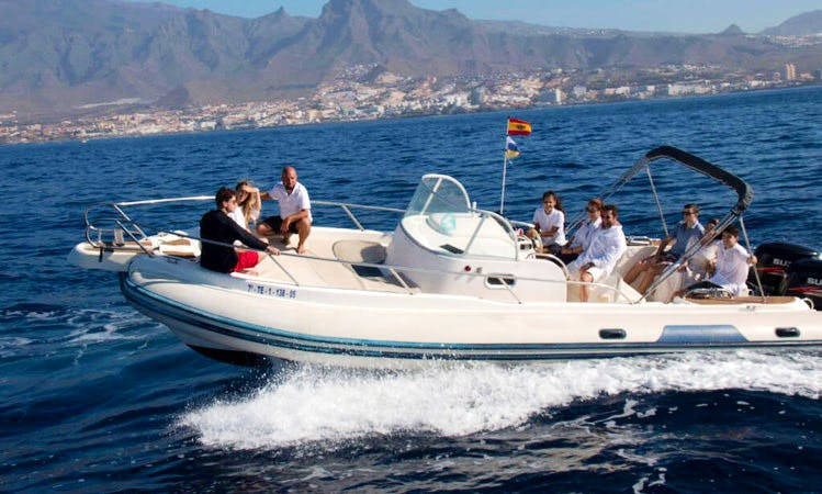 Charter a Rigid Inflatable Boat in Costa Adeje, Spain