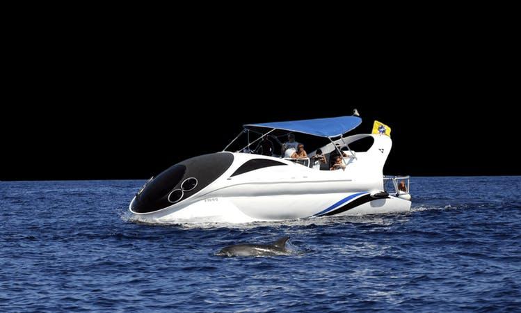 """Charter """"Fantasy"""" Power Catamaran In Tarajal"""