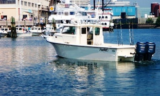 Enjoy Fishing On 28ft Parker Pilothouse Boat In Brookhaven, New York