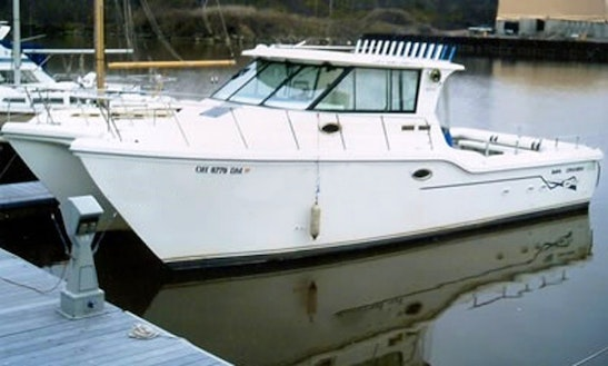 34' Fishing Charter In Valley View, Ohio