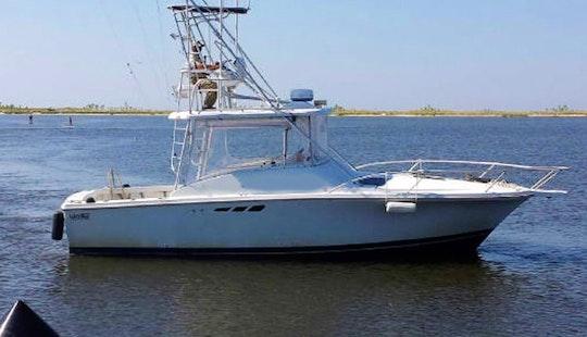 30' Sport Fishing Charter In Biloxi