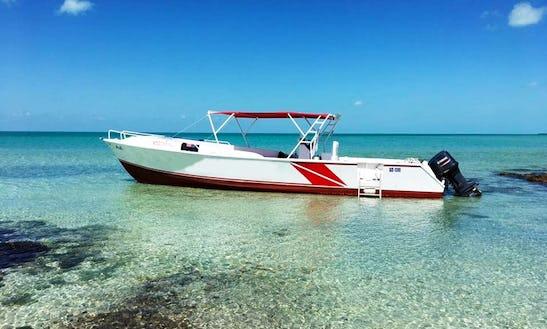 Private Charter: Island Sightseeing, Sea & Sun: San Pedro, Belize