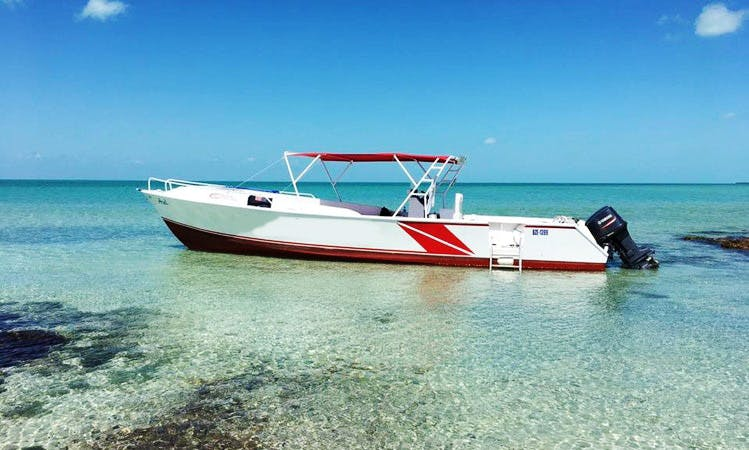 Private Charter: Island Sightseeing, Sea and Sun: San Pedro, Belize