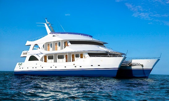 113' Luxury Mega Motorized Catamaran Charter