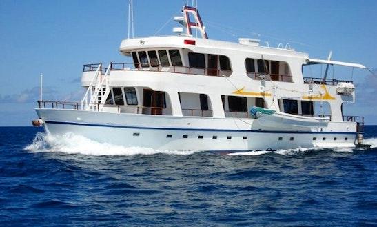 Angelito Passenger Boat Charter In Puerto Ayora