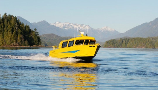 High Speed Covered Family Cruiser In Tofino