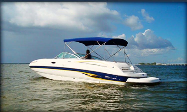 26' Chaparral Sunesta Bowrider in Cape Coral, Florida