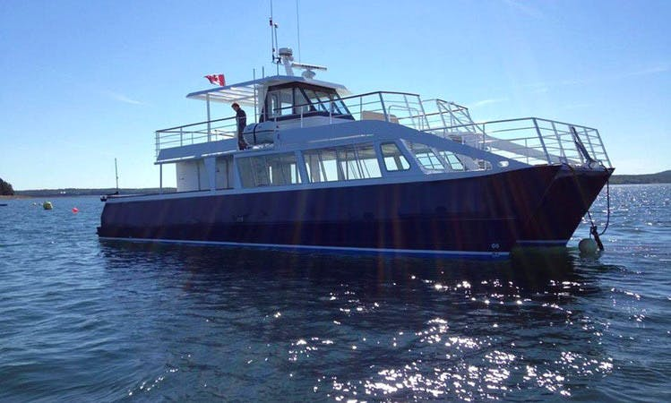 """55' Power Catamaran """"Quoddy Link"""" Whale Watching Trips in Saint Andrews, Canada"""