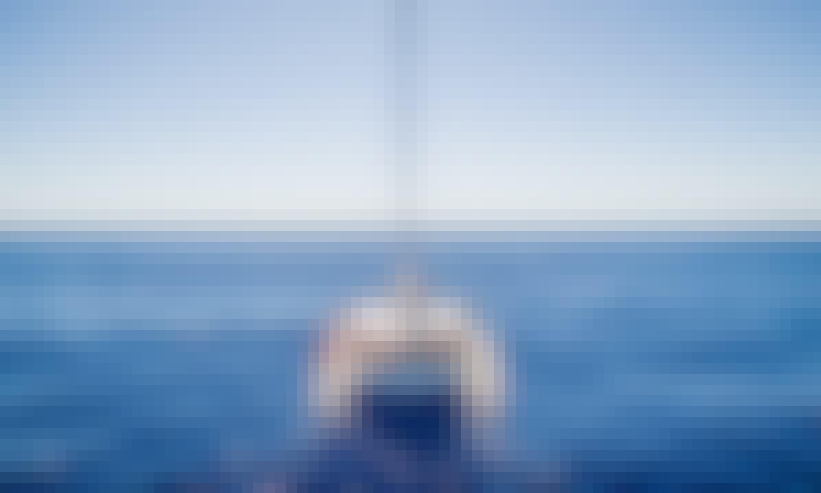 Sailing Catamaran Trips from Funchal, Madeira