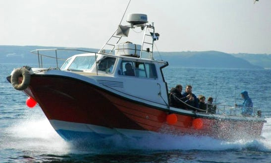 Fishing Trips In Newquay