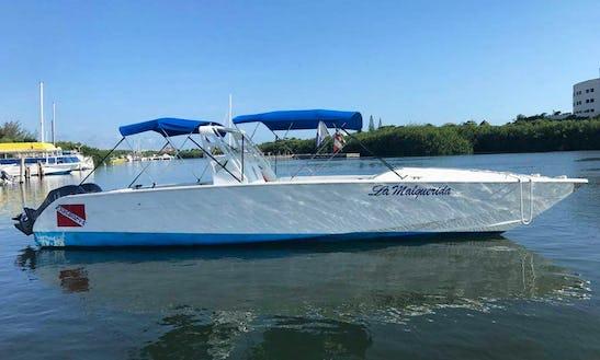 Whaleshark Enconter Boat