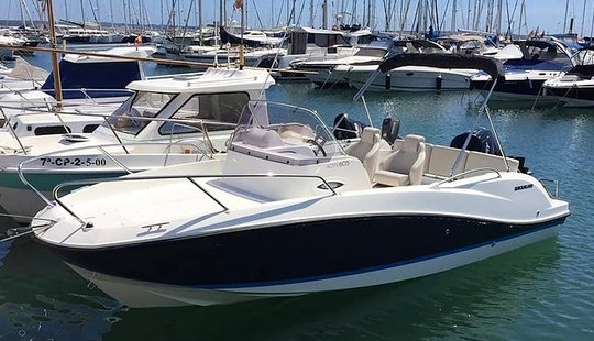 Enjoy The Quicksilver Activ Q604 Sundeck In Palma, Spain