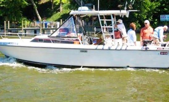 Go Fishing On Lake Michigan