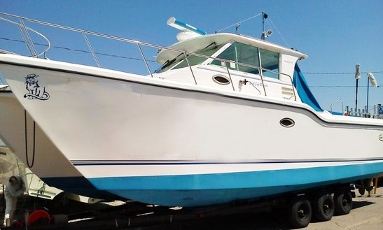 Fishing Charter Boats On Lake Erie