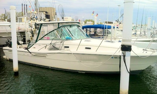 30ft Pursuit Express Motor Yacht Charter In Michigan, Indiana