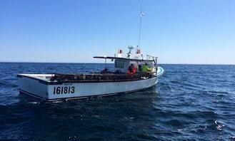 Head Boat Fishing Trips in Lot 46, Canada