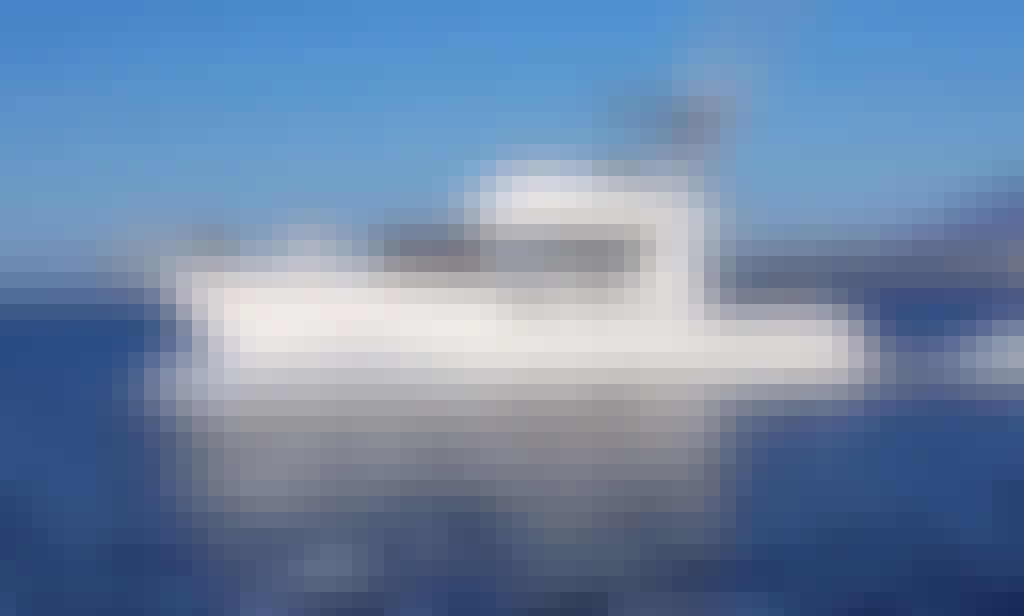 Rodman 1250 Sport Fishing Yacht Charter in Puerto Banús