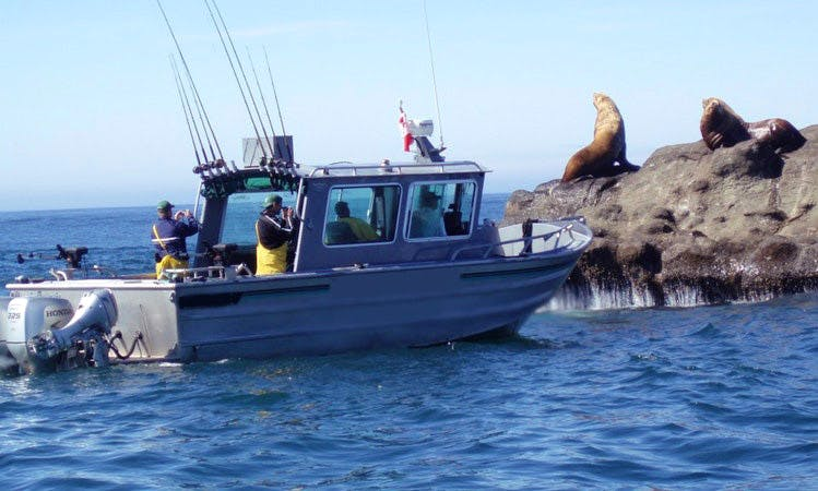 Guided Fishing Trips and Lodging in Port Renfrew