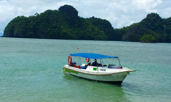 Custom Charter Experience On A Center Console In Langkawi, Malaysia