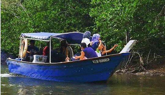 Private Or Public Tours On Boat From Langkawi, Malaysia