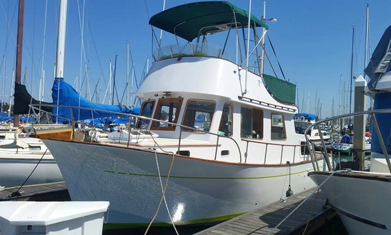 Fishing Charter On 34' Chb Trawler In San Diego, California