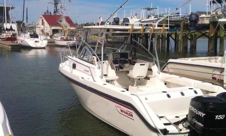 28ft Sport Fisherman Boat Fishing Charter in Charleston Harbor, South Carolina
