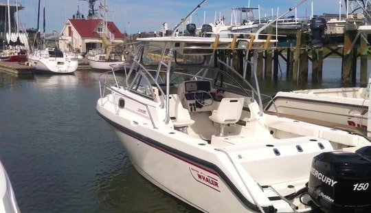 28ft Sport Fisherman Boat Fishing Charter In Charleston Harbor, South Carolina