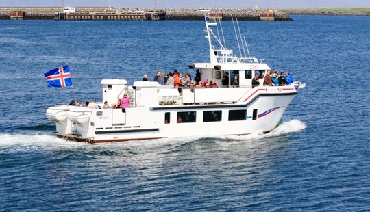 Charter 165' Tour Boat In Iceland