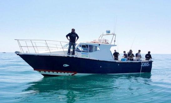 'theseus Ii' Boat Fishing Charter In St Helier