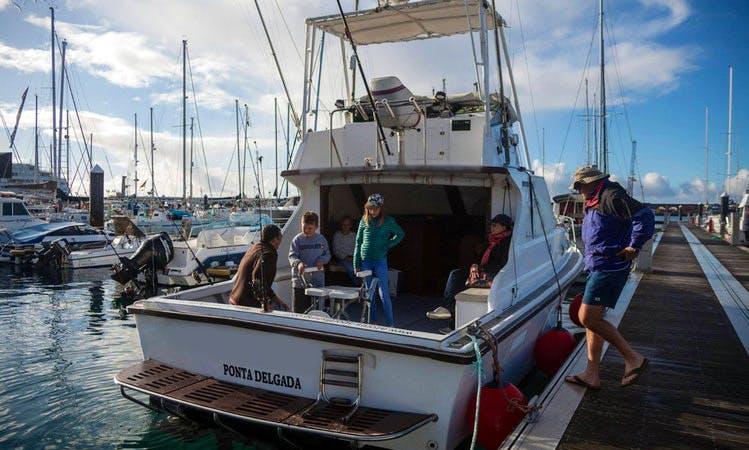 Fishing Charter Ponta Delgada, on 33' Rabao Sport fisherman