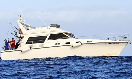 39ft Sport Fisherman Charter In Santiago Del Teide, Spain
