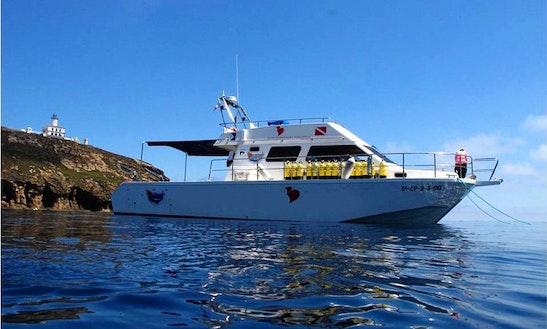 Trawler Boat Fishing Charter In Castellón De La Plana, Spain