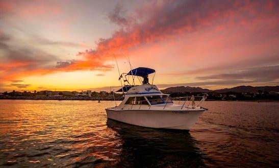 Fishing & Pleasure Vessel At Marina La Cruz And Punta Mita