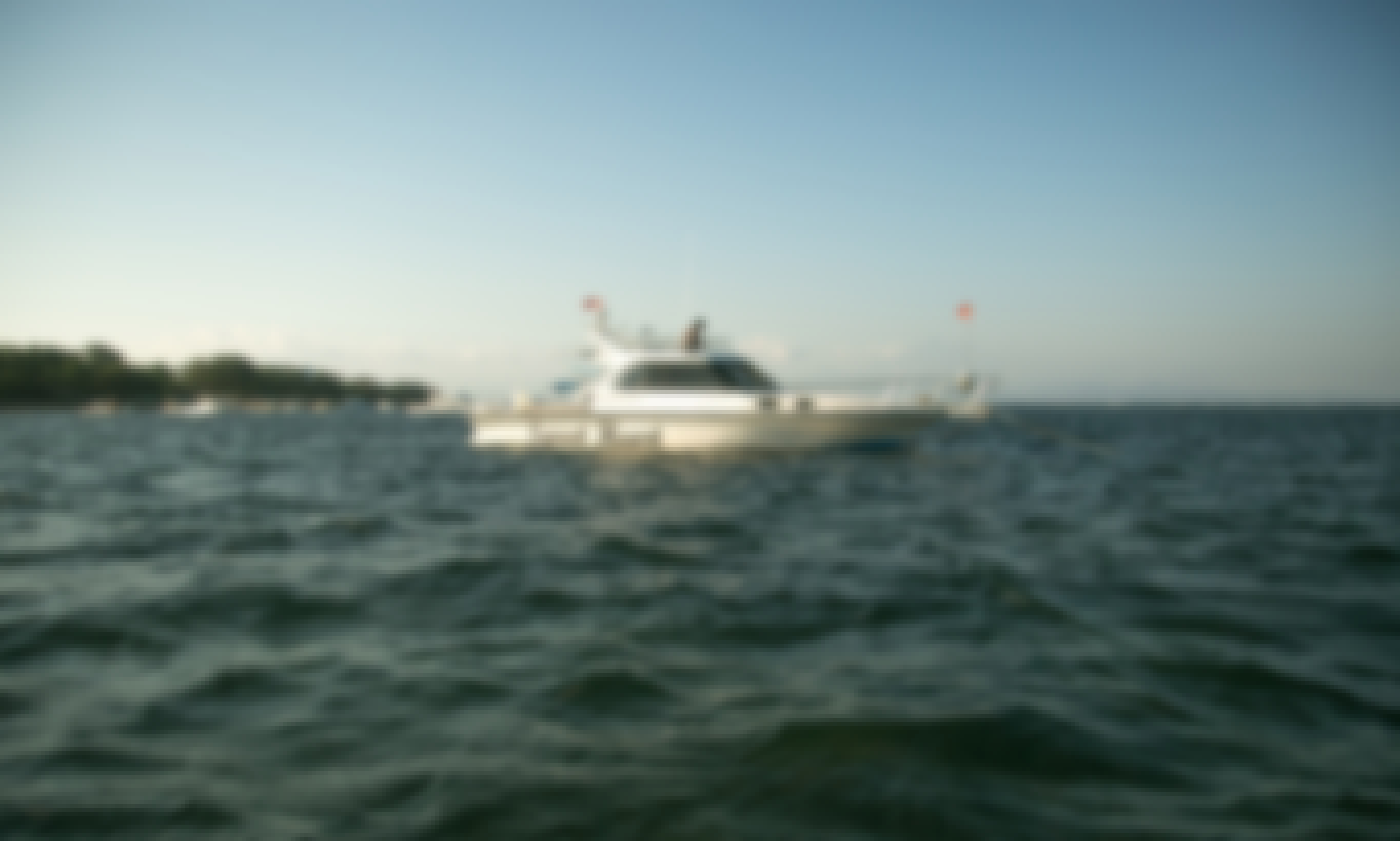 Snorkeling Day Charter Only in Sanur Bay
