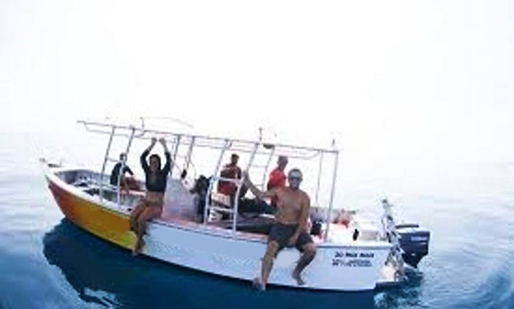 Customized Private Half day Boat Charters out of Nadi, Fiji