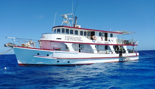 'kalinda' Liveaboard Diving & Party Charters In Townsville City