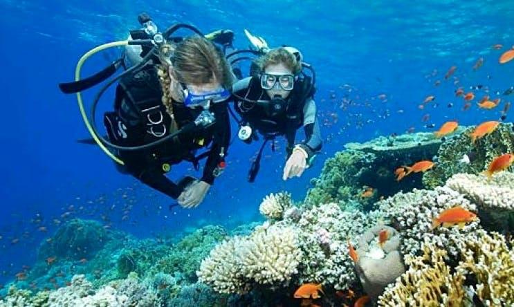 Snorkeling and Diving in Kuta Selatan, Bali