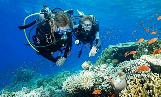 Enjoy Diving In Kuta Selatan, Bali