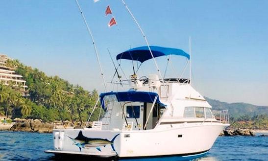 35'  Bertram Head Boat