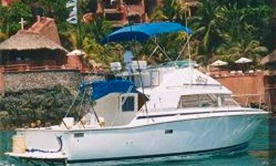 Fishing Charter 'vamonos Iii' In Zihuatanejo