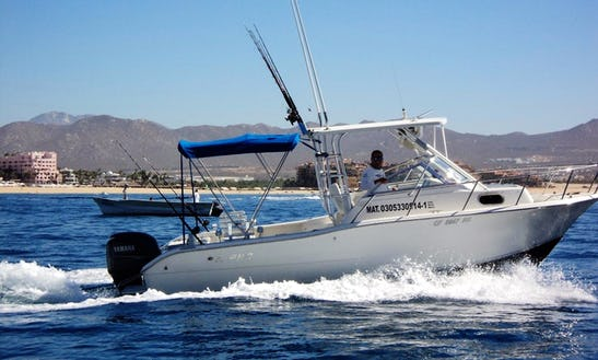 Fishing Charter In Cabo San Lucas