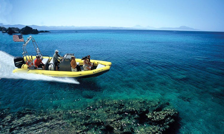 Whale Watching & Snorkeling Boat Tours in San Diego