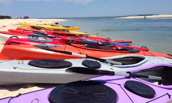 1 Hr. Guided Kayak Tour At Gold Star Battalion Beach