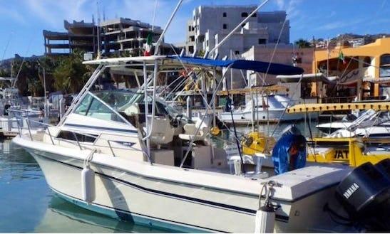 25' Grady White Rental In Los Cabos