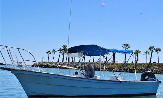 Los Cabos Fishing, 24' Boat. Tuna, Marlin, Mahi Mahi And More