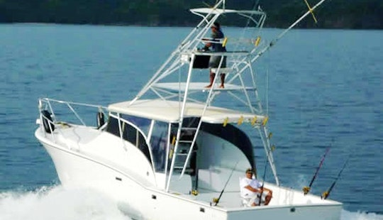 Brindisi 37 Fishing Charter In Coco